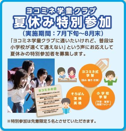 市 小学校 夏休み 横浜